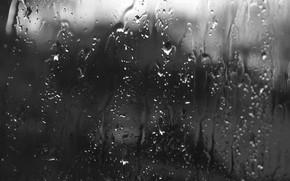 雨, 滴, ガラス