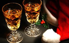 Ao Nuevo, Navidad, gafas