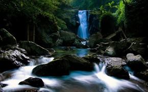 Wasserfall, Steine, Dschungel