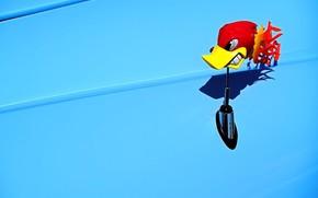blue, toy, woodpecker