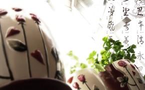 Flores, luz, ventana