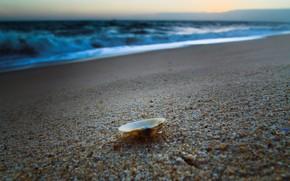 ocean, sand, sky