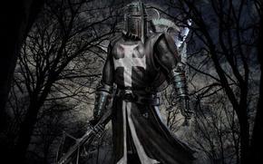 игры, рыцарь, престоносец
