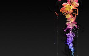 черный фон, цветы, краска, капли
