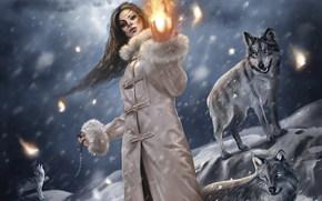 Magic Fire, fille, Loups, hiver, fantaisie