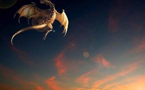 дракон, полёт, закат, фентези