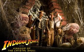 Индиана Джонс и Королевство xрустального черепа, Indiana Jones and the Kingdom of the Crystal Skull, film, movies