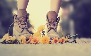цветы,  дорога,  ботинки,  нежно