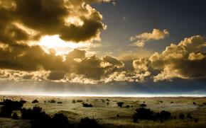 sky, horizon, солнце. лучи