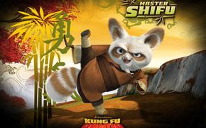 Kung Fu Panda, Kung Fu Panda, pelcula, pelcula