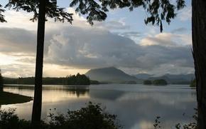 calmer, lac, nuages, branche