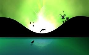 delfino, acqua, energia