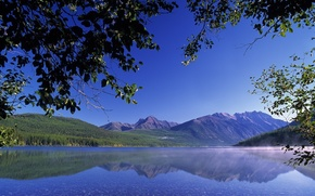 ветки,  листья,  озеро,  горы,  прозрачная,  вода,  камешки,  дно