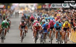 游戏, 胜利, 自行车, 竞赛