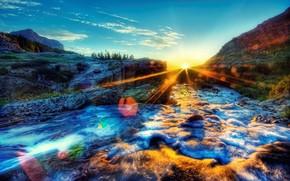 река, утро, солнце