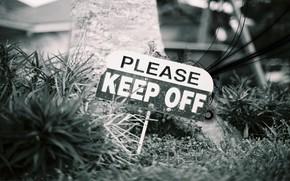 злость, предупреждение, надпись, табличка, знак, ближний план, стиль, трава