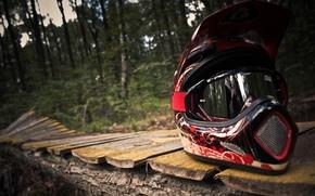 шлем, маунт-байкинг, лес, дорожка