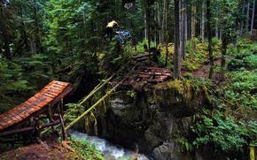 自由式滑雪, 跳板, 河, 森林, teylvip, 飞行