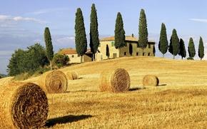 Wochy, Toskania, Europa, dom, cyprys, pole, drzewo, drzew, cyprysy, siano