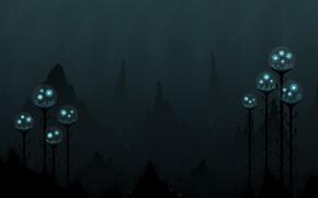 profondit, luce, scuro, Medusa