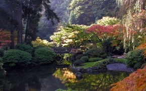 японский сад,  мост,  вода,  утро