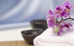 орхидея,  полотенце,  посуда,  чашки,  ткань,  цветок,  восток