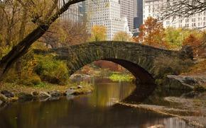 мост, речка, весна, деревья, листья, город, дома, нью-йорк