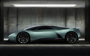 Lamborghini, insecticide, Concept