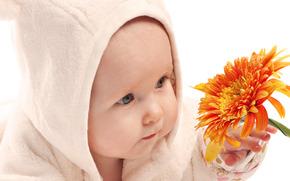 fiore, bambino, bambino
