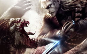 The Witcher, sword, monster