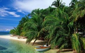 море,  океан,  пляж,  пальмы,  остров,  лодка