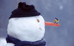 Синица,  снеговик