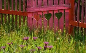 день святого Валентина,  забор,  сердце