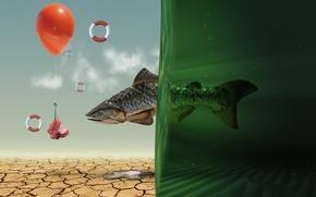 рыба, вода, засуха, воздушный, шар, крючок, наживка, спасательный, круг