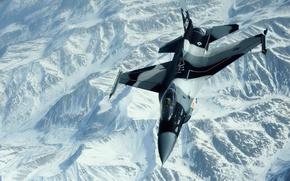 Kmpfer, Flug, Farben, Hintergrund, Gebirge