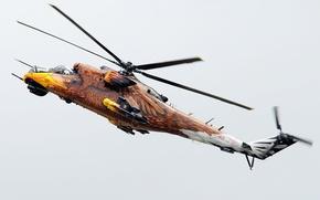 Ми-24,  вертолёт,  орёл,  рисунок,  полёт