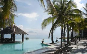 tropics, resort, Palms, water