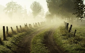 morning, dawn, fog, road, grass, fence, забор, Trees, nature