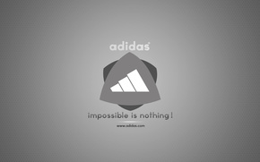adidas, brand name, firm, sport