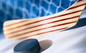 хоккей, россия, канада, лед