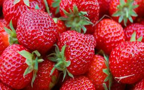 клубника,  ягоды,  фрукты,  еда,  красный