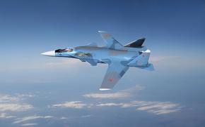 l, Su-47, guia dourada