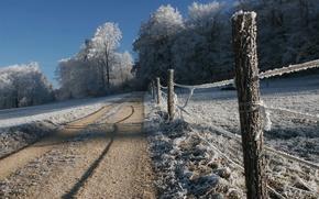 дорога,  зима,  иней,  деревья,  изгородь