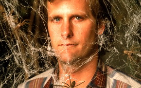 Боязнь пауков, Arachnophobia, film, movies