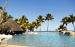 palma, sole, Le Isole Fiji, Fiji, Pacifico, spiaggia, piscina, riposo, paradiso, paradiso, fiji, isola
