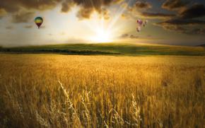 рассвет,  поле,  колоски,  воздушные шары,  облака