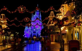 Disneyland, Giappone, notte, casa, persone, strada, riposo