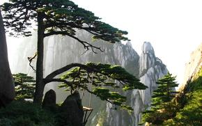 nature, China, mountain, air, sky, pine, rock