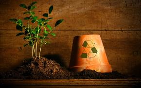 land, pot, plant, icon, basket, urn, debris