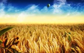 природа,  небо,  воздушный шар